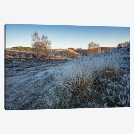 Cold as Ice Canvas Print #MPO162} by Martin Podt Canvas Wall Art