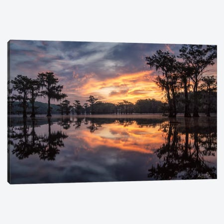 Sunrise in the Swamps Canvas Print #MPO170} by Martin Podt Canvas Print