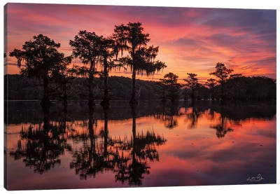 Swamp on Fire Canvas Art Print