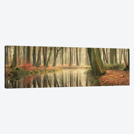 The Healing Power Of Forests 3-Piece Canvas #MPO176} by Martin Podt Canvas Wall Art