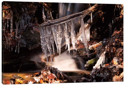 Icicles Canvas Art Print