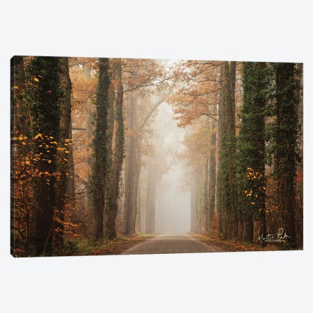 Foggy Autumn Road Canvas Print #MPO182} by Martin Podt Canvas Artwork