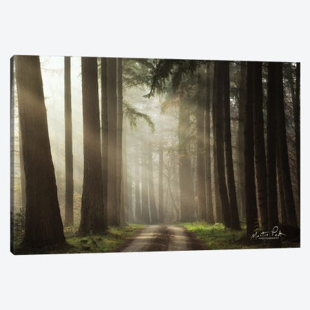 Natural Beauty Canvas Print #MPO185} by Martin Podt Canvas Print