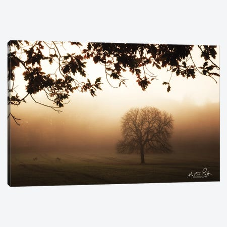 Under The Leaves Canvas Print #MPO187} by Martin Podt Art Print
