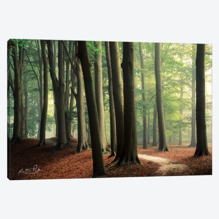 In the Curve Canvas Print #MPO19} by Martin Podt Art Print