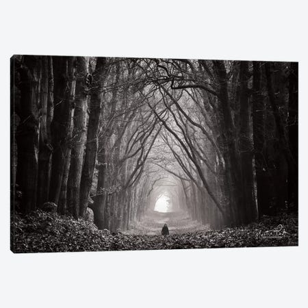 In the Land of Gods and Monsters Canvas Print #MPO20} by Martin Podt Canvas Wall Art