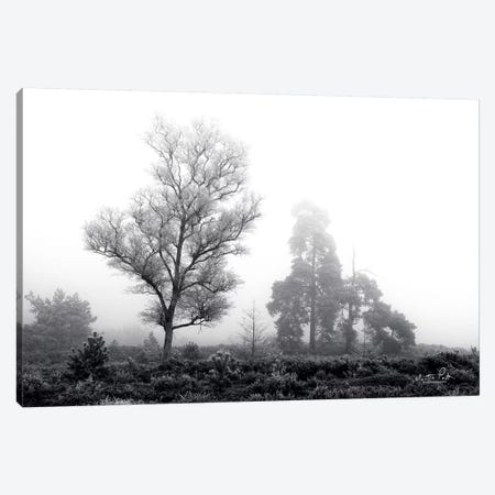 Less is More Canvas Print #MPO23} by Martin Podt Canvas Artwork