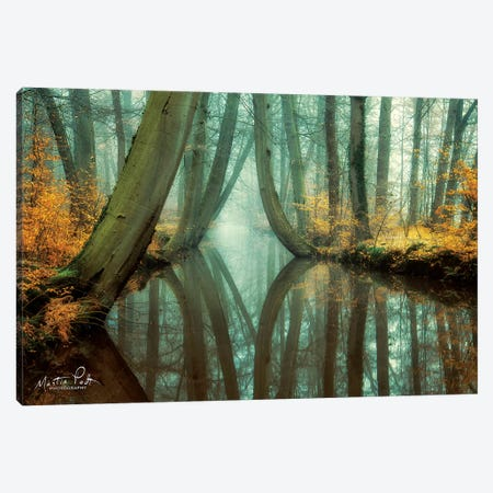 Lust for Life Canvas Print #MPO28} by Martin Podt Canvas Artwork