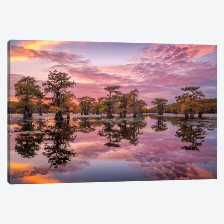 Magnificent Sunset in the Swamps Canvas Print #MPO29} by Martin Podt Canvas Artwork