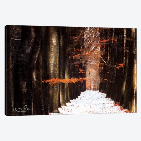 Red and Wet Canvas Print #MPO34} by Martin Podt Canvas Artwork