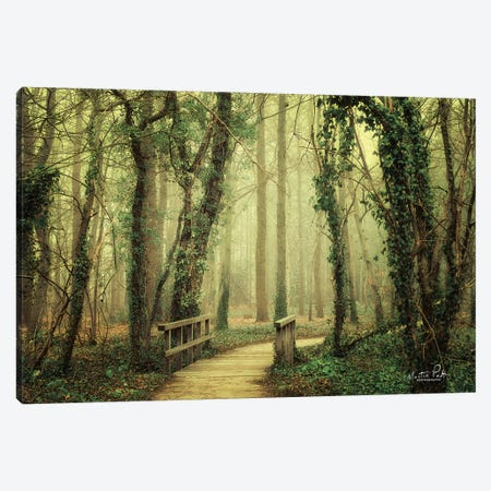 The Bridge Canvas Print #MPO41} by Martin Podt Canvas Art