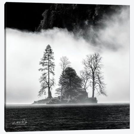 The Island Canvas Print #MPO44} by Martin Podt Canvas Print