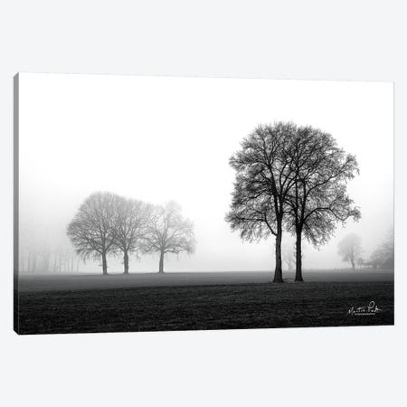 Together Again Canvas Print #MPO47} by Martin Podt Art Print