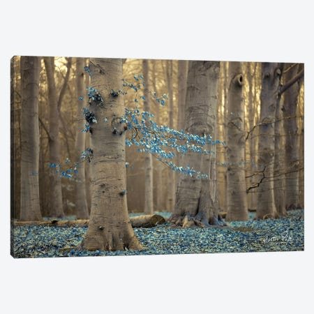 Winter Blues Canvas Print #MPO50} by Martin Podt Canvas Print