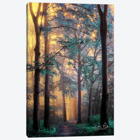 Wonderland Canvas Print #MPO51} by Martin Podt Canvas Print