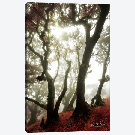 Red Dreams Canvas Print #MPO62} by Martin Podt Canvas Wall Art