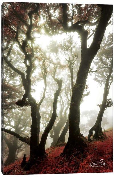 Red Dreams Canvas Art Print