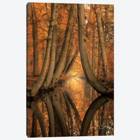 The Bent Ones Canvas Print #MPO65} by Martin Podt Canvas Art Print