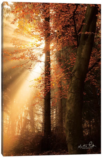 The Best of Autumn Canvas Art Print