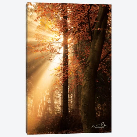 The Best of Autumn Canvas Print #MPO66} by Martin Podt Canvas Print
