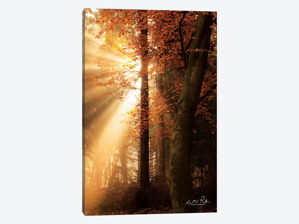 The Best of Autumn by Martin Podt 1-piece Canvas Art Print