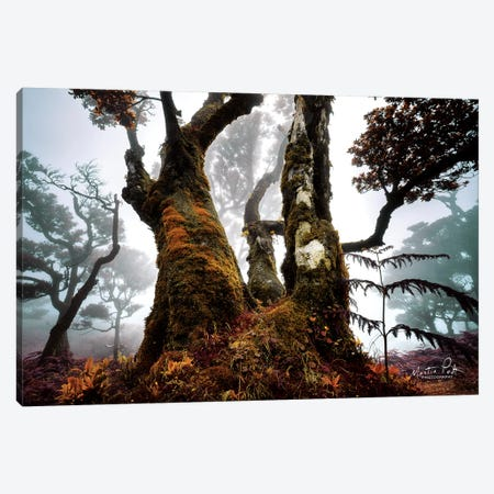 The Dark King Canvas Print #MPO68} by Martin Podt Canvas Wall Art