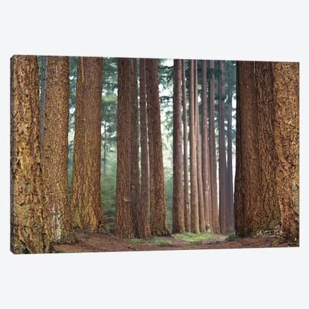 Bars Canvas Print #MPO6} by Martin Podt Canvas Wall Art