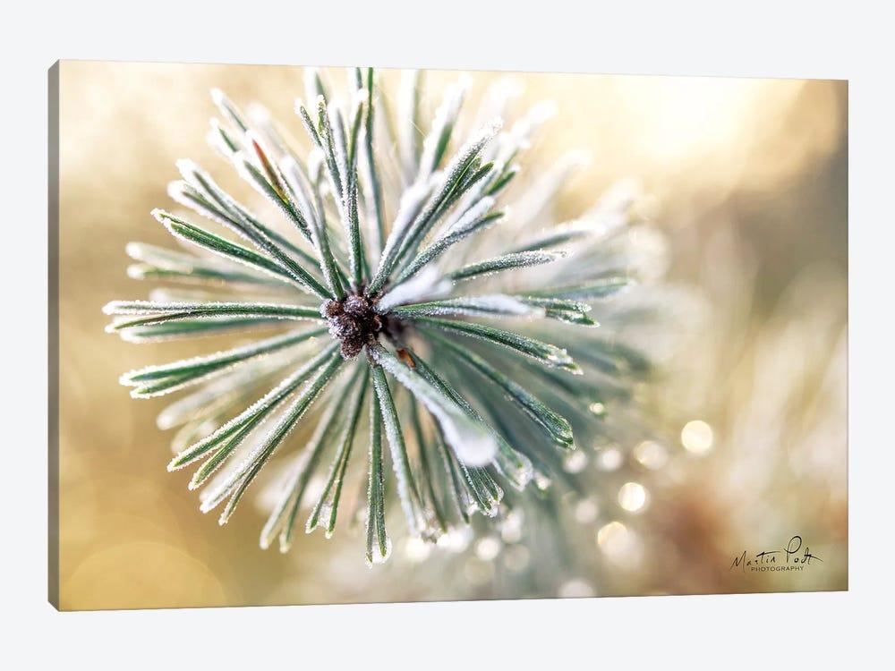 Winter Details by Martin Podt 1-piece Canvas Art