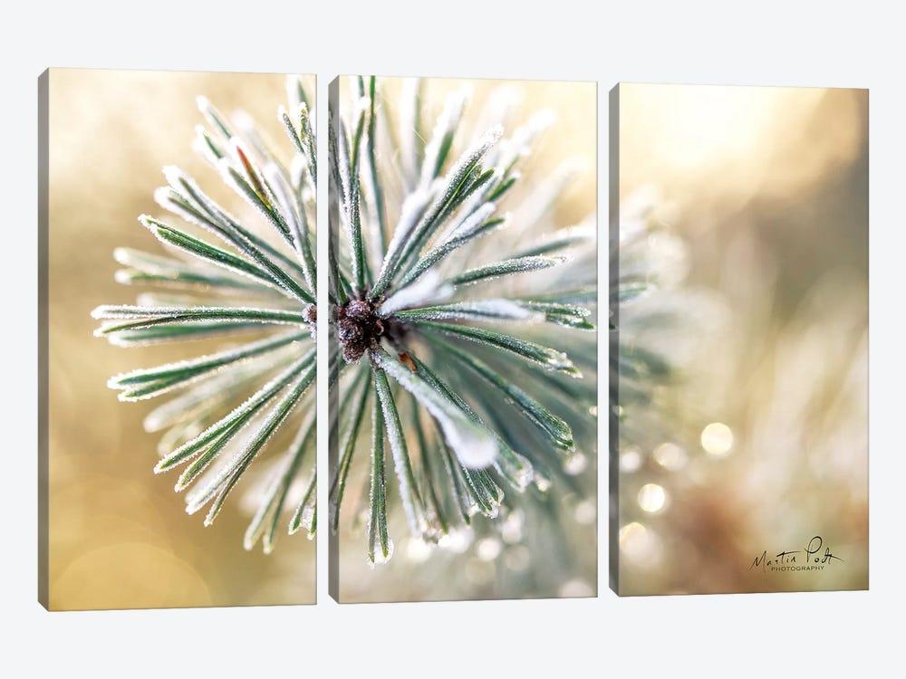 Winter Details by Martin Podt 3-piece Canvas Art