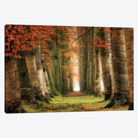 Wrapped Canvas Print #MPO71} by Martin Podt Canvas Print