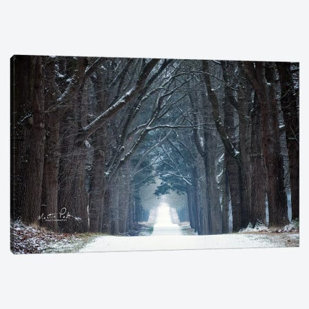 Cold Road Canvas Print #MPO74} by Martin Podt Canvas Artwork