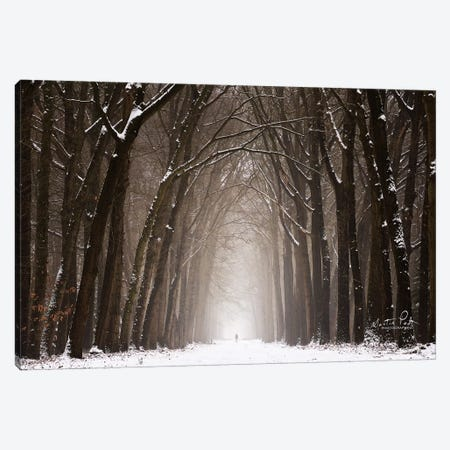Lochem in Winter Canvas Print #MPO77} by Martin Podt Canvas Art