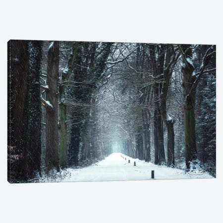 Snow in Markelo Canvas Print #MPO80} by Martin Podt Canvas Artwork