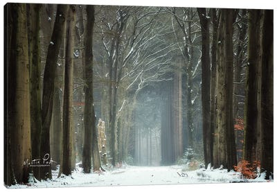 Winer Alley Canvas Art Print