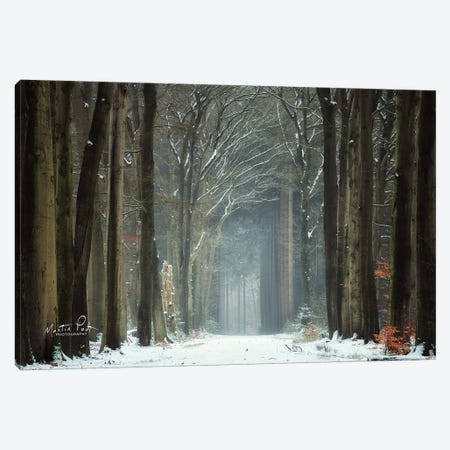 Winer Alley Canvas Print #MPO86} by Martin Podt Canvas Print