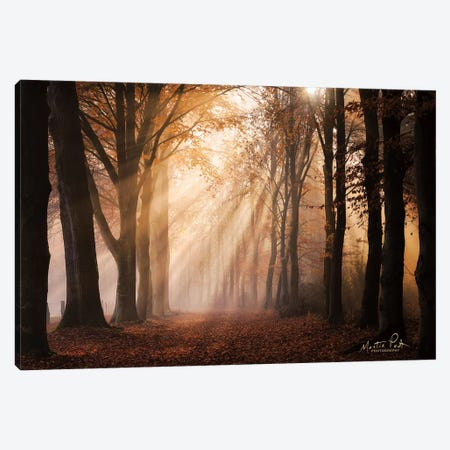 Look for the Light in All Things Canvas Print #MPO96} by Martin Podt Canvas Artwork