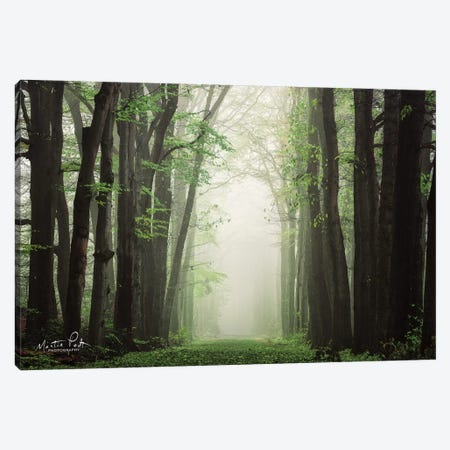 Moisture is the Essence of Wetness    Canvas Print #MPO99} by Martin Podt Art Print
