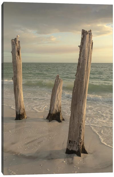 Lovers Key State Park, Florida Canvas Art Print