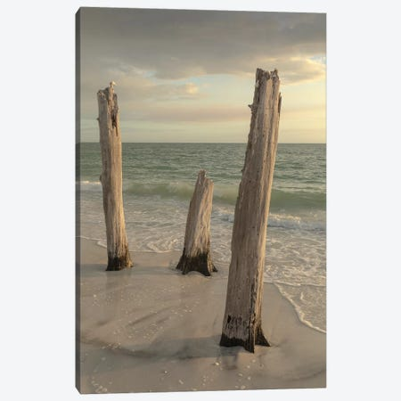 Lovers Key State Park, Florida Canvas Print #MPR14} by Maresa Pryor Canvas Art Print