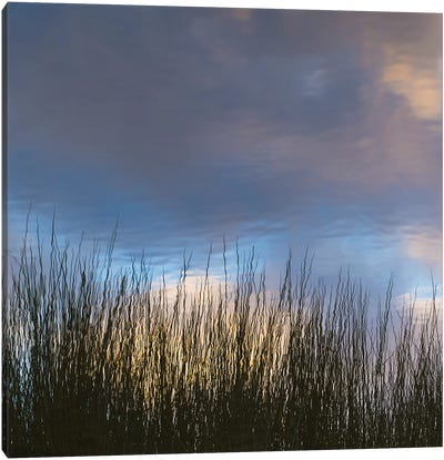 Reflections, Merritt Island National Wildlife Refuge, Titusville, Florida, USA Canvas Art Print
