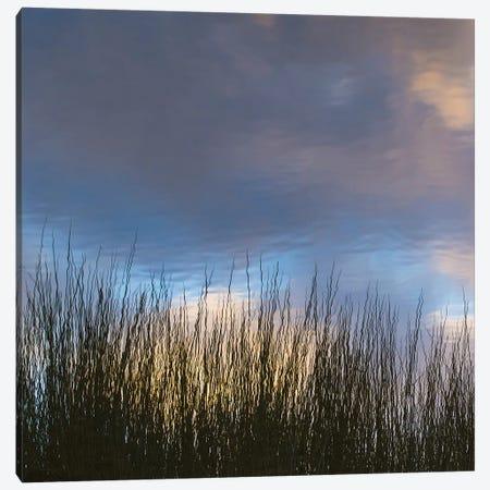 Reflections, Merritt Island National Wildlife Refuge, Titusville, Florida, USA Canvas Print #MPR17} by Maresa Pryor Canvas Print