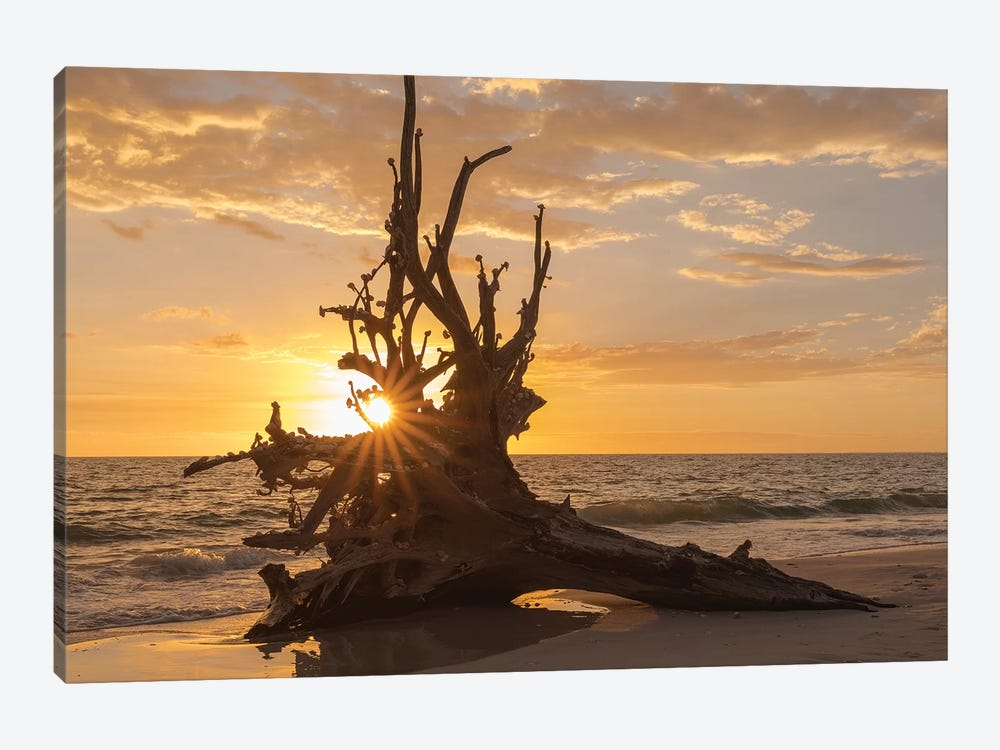 Sunset at Lovers Key State Park, Florida by Maresa Pryor 1-piece Canvas Art