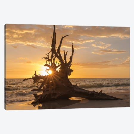 Sunset at Lovers Key State Park, Florida Canvas Print #MPR18} by Maresa Pryor Canvas Artwork