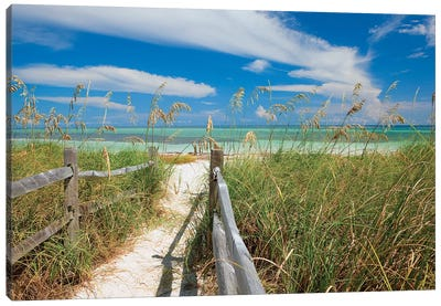 Beachscape With Sea Oats, Bahia Honda State Park, Florida Keys, Florida, USA  Canvas Print #MPR1