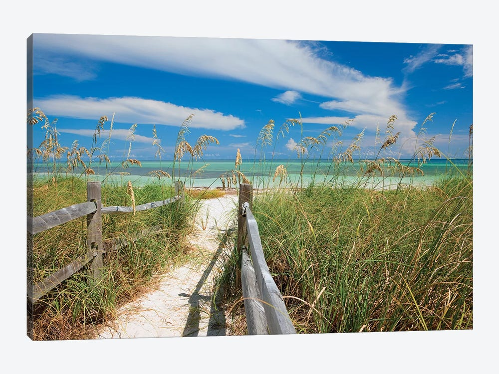 Beachscape With Sea Oats, Bahia Honda State Park, Florida Keys, Florida, USA by Maresa Pryor 1-piece Canvas Artwork