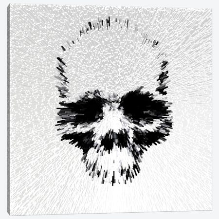 Skull - White Canvas Print #MPS18} by Morgan Paslier Canvas Print