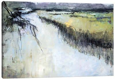 Green Marsh Canvas Art Print