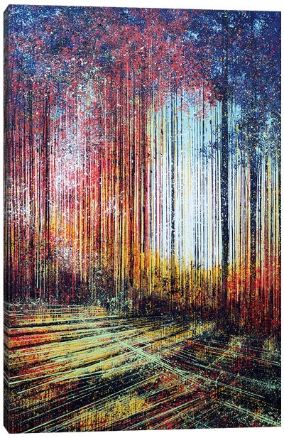 Sunlight Through The Trees Canvas Art Print