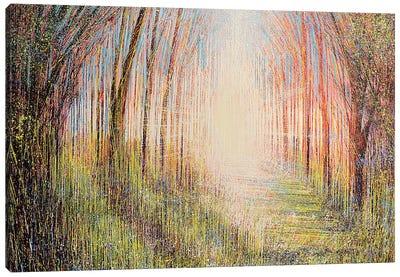 The Light Ahead Canvas Art Print