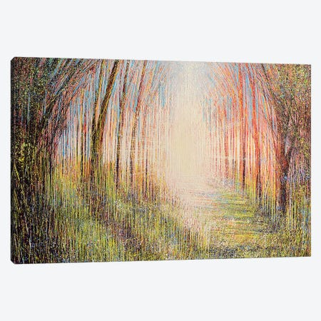 The Light Ahead Canvas Print #MRC12} by Marc Todd Canvas Art